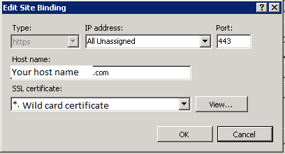 Hostname textbox is editbale in IIS